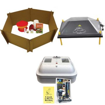 Baby Chick Starter Kit With Large Comfort Chick Brooder and Hova-Bator Incubator