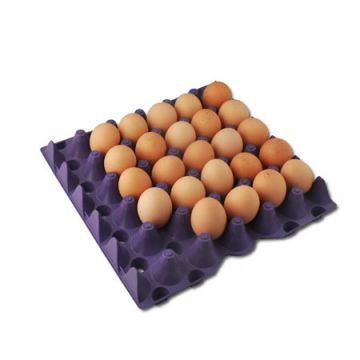 Plastic Egg Flats - Stackable