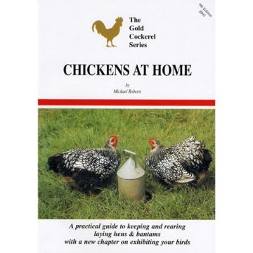 Chickens at Home