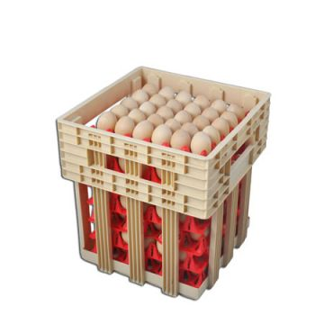 15 Case Egg Transportation Case