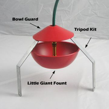 Bowl Guard for Little Giant Automatic Founts