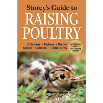 Guide to Raising Poultry