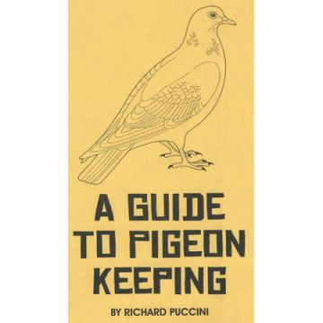 Guide to Pigeon Keeping