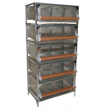 15 Section Quail Battery