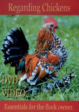 Regarding Chickens DVD