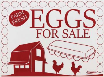 Eggs For Sale - Large Yard Sign