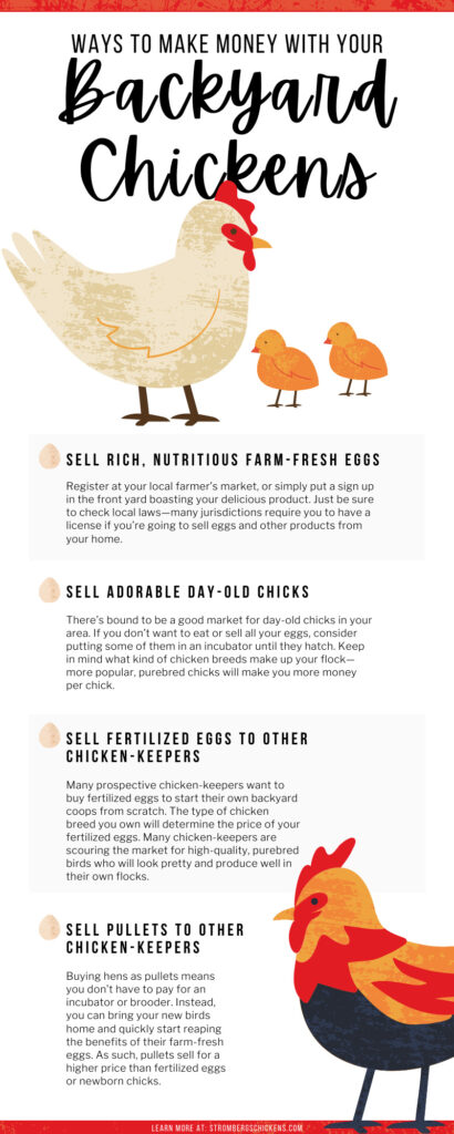 8 Ways To Make Money with Your Backyard Chickens