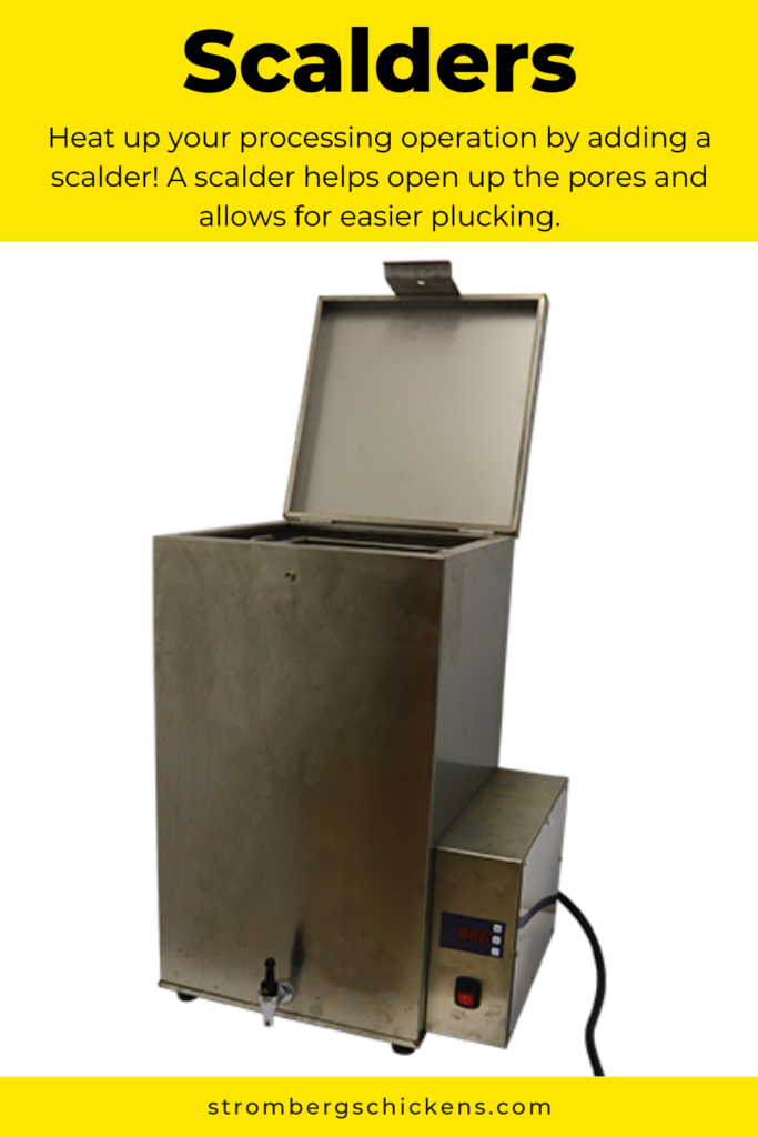 Scalders for Chicken Processing Stromberg's
