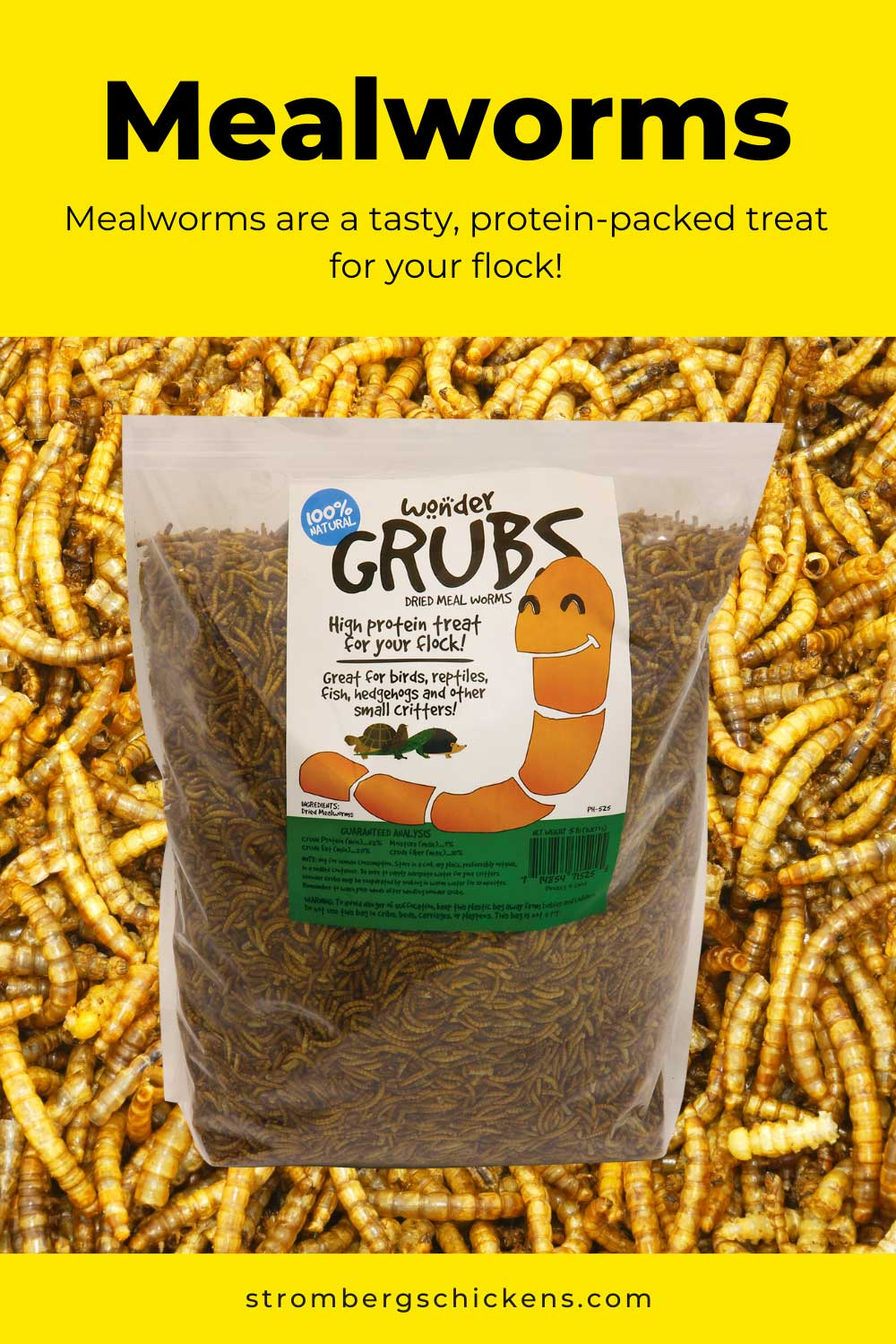 Wondergrubs mealworms are a protein-packed treat for your flock. Stromberg's
